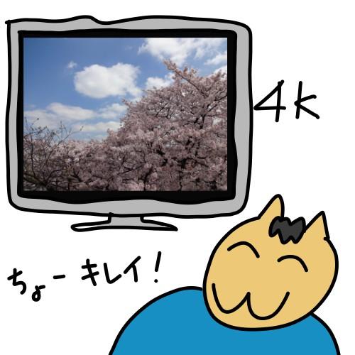 4Kテレビは綺麗