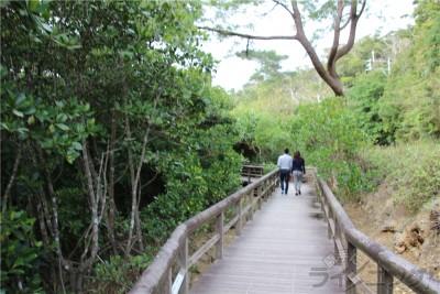 沖縄旅行_0405