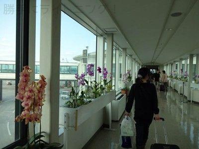 2月沖縄旅行 (68)