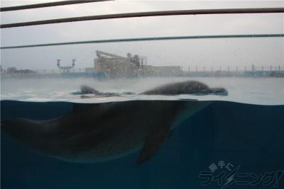 沖縄旅行_0740
