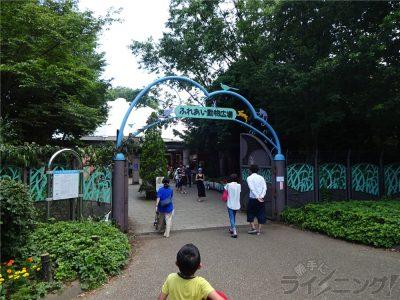 相模原麻溝公園 (148)