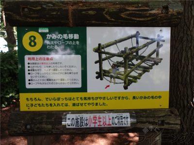 相模原麻溝公園 (37)