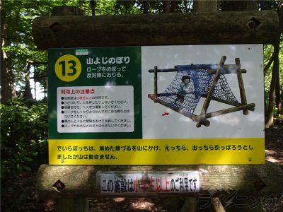 相模原麻溝公園 (60)