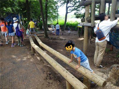 相模原麻溝公園 (8)