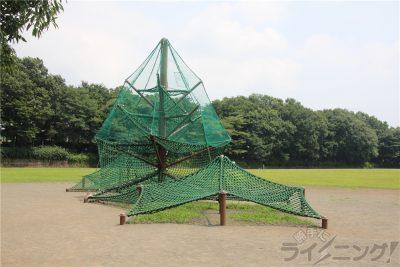 相模原麻溝公園-追撮 (22)