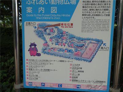 相模原麻溝公園 (150)
