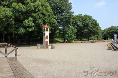 相模原麻溝公園-追撮 (186)