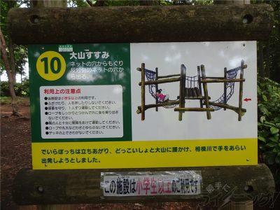 相模原麻溝公園 (44)