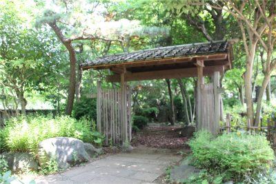 相模原麻溝公園-追撮 (136)