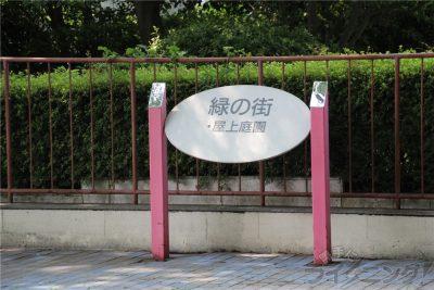 相模原麻溝公園-追撮 (193)