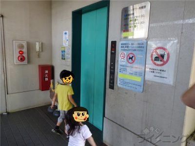 相模原麻溝公園 (121)