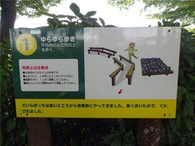 相模原麻溝公園 (10)