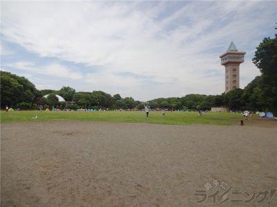相模原麻溝公園 (4)